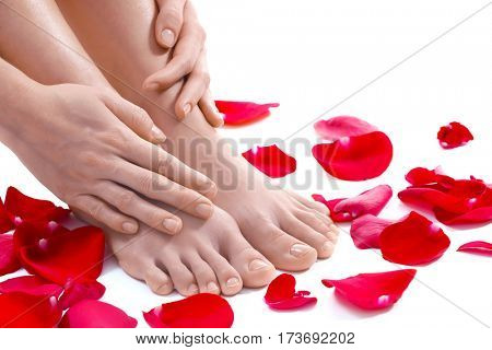 Female legs, hands and red petals on white background