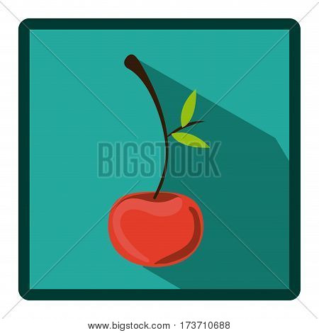 emblem cherry icon image, vector illustration design stock