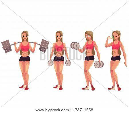Young woman, female bodybuilder working out with barbell and dumbbell, drinking protein shake, cartoon vector illustration isolated on white background. Woman bodybuilder in various positions