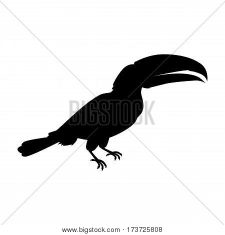 Toucan vector. Animals of rainy Amazonian forests in black color. Fauna of South America. Wild life in tropics concept for posters, childrens books illustrating. Beautiful toucan isolated on white.