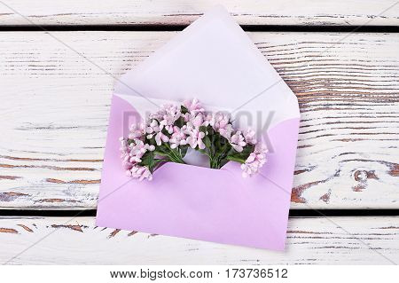 Bunch of flowers in envelope. Romantic surprise for beloved.