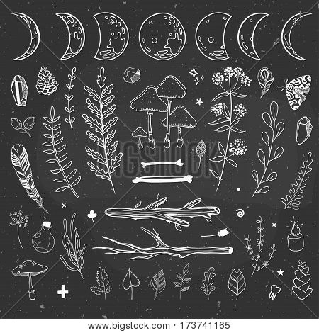 Vector mysterious doodles with plants and shamanic objects.