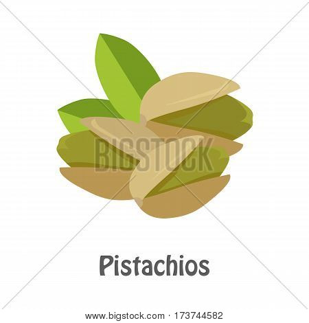 Illustration of pistachios nuts. Ripe pistachios nuts with leaves in flat. Several pistachio nuts, close up. Healthy vegetarian food. Isolated vector illustration on white background.