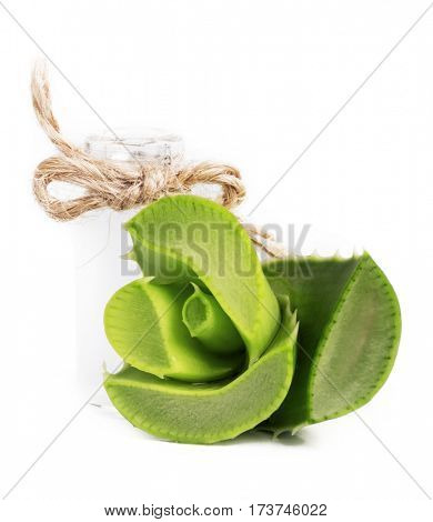 Fresh leaves of aloe vera. isolated on white background