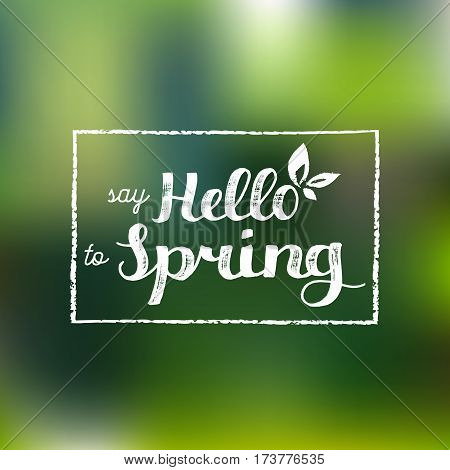 Vector hand lettering inspirational typography poster. Say hello to spring on blurred background