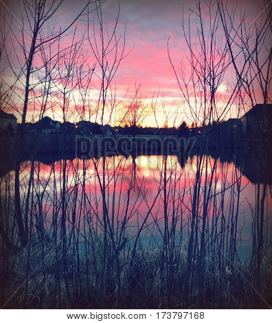 A Midwest sunset shining through trees and reflecting on pond,  with cool blue tones and red tones.
