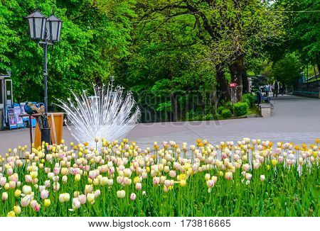 View of the Park, city Zheleznovodsk. Northen Caucasus water-place resort. Russia. Colorful tulips on the background.