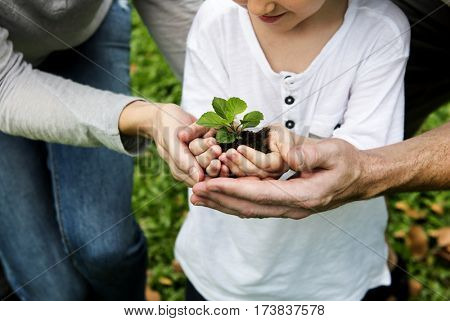 Environmental conservation family planting in the park