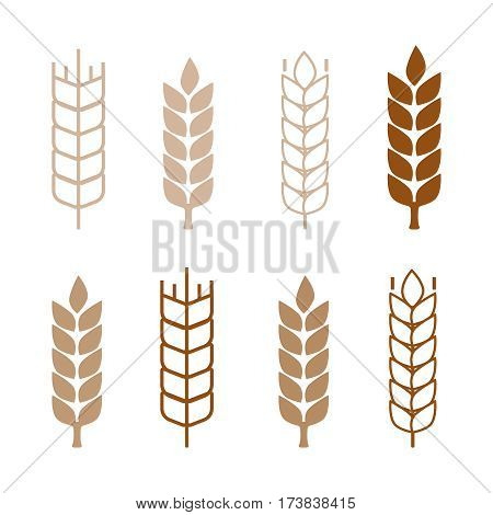 Set of simple wheat ears icons and wheat design elements. Wheat vector