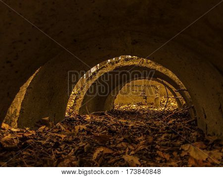 Tunnel from concrete material.Leaves in the tunnel