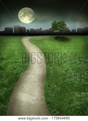 Beautiful night landscape with path tree moon and sky