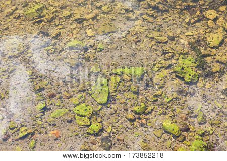 stones from the river bottom can be seen through clear water