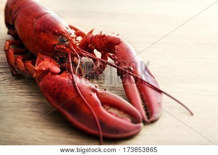 Red lobster on wood