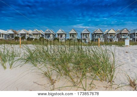 Grasses and Dunes with Row of Beach Houses in background