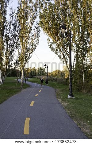 Lasalle, Quebec, October 4, 2015 -- Vertical of two people jogging down a long walking path going through colorful trees and foliage in Woodland Park in Lasalle, Quebec on a bright sunny day in October.