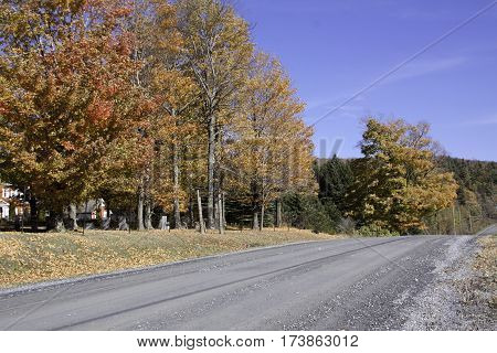 Wide view of gravel road running through the rural countryside with autumn trees of colorful fall foliage on a beautiful bright sunny day in October near the town of Frelighsburg in the Eastern Townships of Quebec.