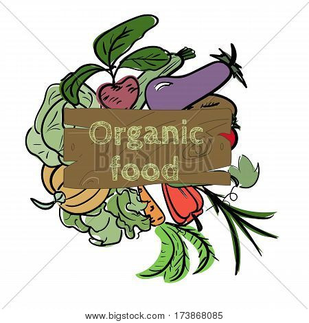 Hand drawn sketch watercolor vegetable icon with text on vintage board. Organic healthy food vector illustration
