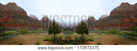 Zions National Park mountain in rainstorm with trees and foliage