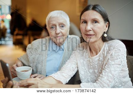 Mature female buddies having rest in cafe
