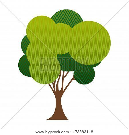 colorful silhouette big leafy tree with zigzag and wave lines inside vector illustration