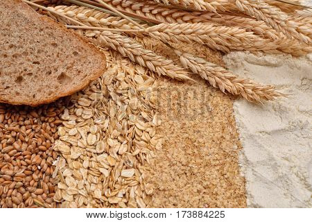 Image Of A Slice Of Bread With Fresh Ears Wheat, Dry Beans Of Wheat, Flour, Integral Wheat Flour And