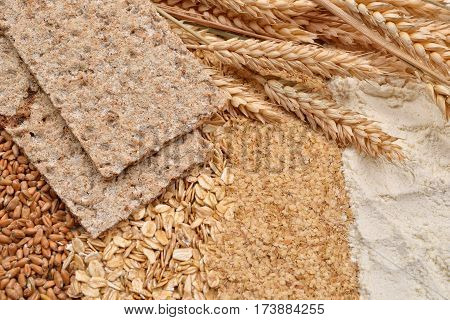 Dry Diet Crisp Breads With Fresh Ears Wheat, Dry Beans Of Wheat, Flour, Integral Wheat Flour And Whe