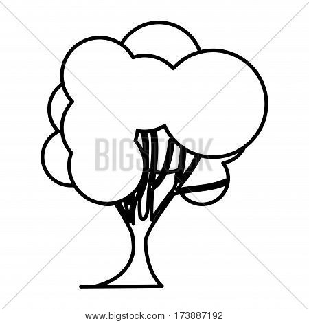 sketch silhouette tree nature icon with trunk vector illustration