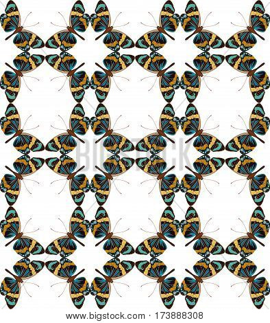Butterfly geometric seamless pattern vector illustration. Colorful vintage tropical pattern with butterfly moth isolated on blue background. Nature wallpaper design, insect backdrop