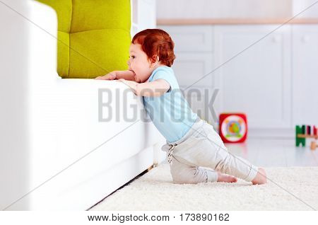 Cute Infant Baby Boy Climbing Up The Couch At Home