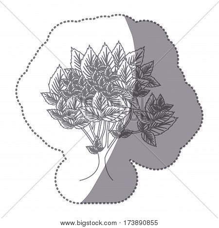 sticker gray color leafy tree with several leaves vector illustration