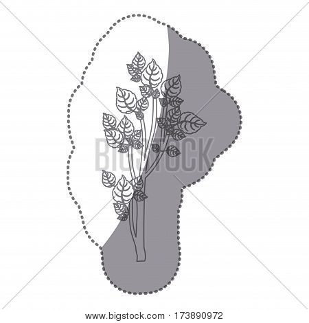 sticker gray color small leafy tree forest icon vector illustration
