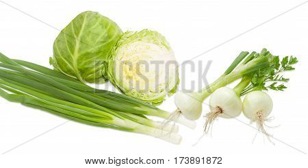 One whole head of the young fresh white cabbage and cabbage head cut in half stalks of the green onion and young bulb onions with part of the stems and roots parsley twig on a light background