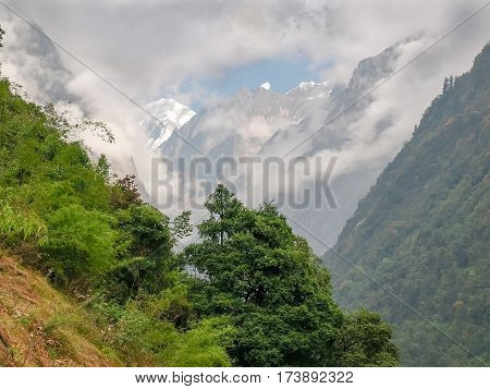 Mountain peaks covered with glaciers and partly shrouded in clouds at the end of the gorge with the trees on a mountain in the foreground in the Himalayas