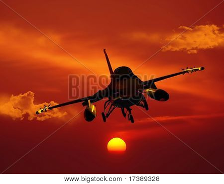 The jet plane on a background of the sky