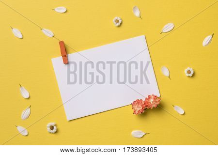 Spring or summer background with copy space for text: blank stationary template / invitation mockup with clothespin chamomiles and petals orange flowers. Top view. Flat lay.