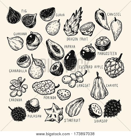 Exotic Fruits, Set