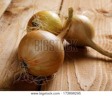 Three Yellow Bulb Onions On Rustic Table