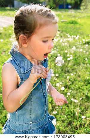 Portrait of cute little girl blowing on dandelion on summer day