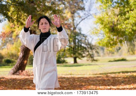 Tai Chi practice in a park, color image