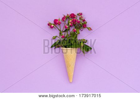 A Bouquet Of Dried Roses In A Waffle Cone On Pink Background.
