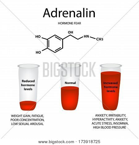Chemical molecular formula of adrenaline hormone. Hormone fear and stress. Lowering and raising the level of adrenaline. Infographics. Vector illustration