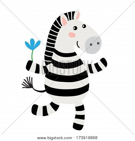 Cute cartoon zebra isolated on white background