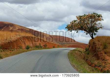Road Through Madagascar Highland Countryside Landscape.