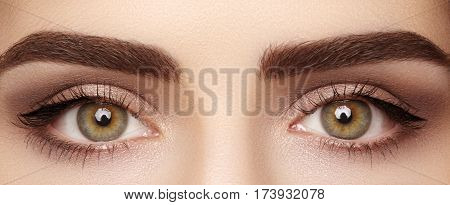 Close-up Macro Of Beautiful Female Eye With Perfect Shape Eyebrows. Clean Skin, Fashion Naturel Make