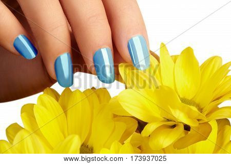 Manicured Nails With Natural Nail Polish. Manicure With Blue Nailpolish. Fashion Manicure. Shiny Gel