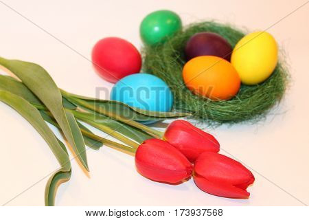 Colored easter eggs and red tulips on white background