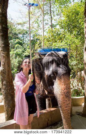 Thailand, Phuket - 19 February 2017 : selfie with an elephant