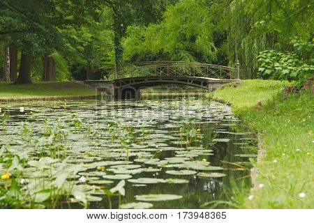 Beautiful bridge over the canal of the Schwerin Palace garden. Water landscape with yellow water lilies