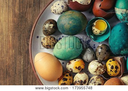 Colored Easter blue brown chicken and quail eggs, whole and broken with yolk in shell in spotted plate over old wooden textured background. Top view, close up