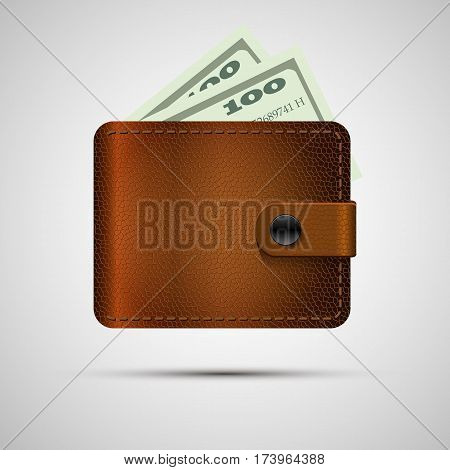 Leather wallet with money. Vector illustration, eps 10. Brown wallet with money isolated with shadow.